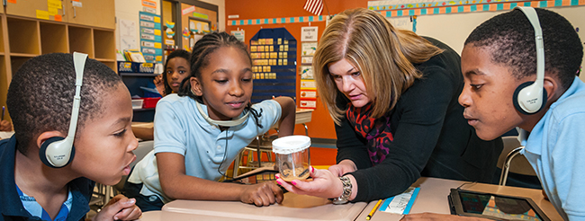 Cleveland teacher with students examining caterpillars