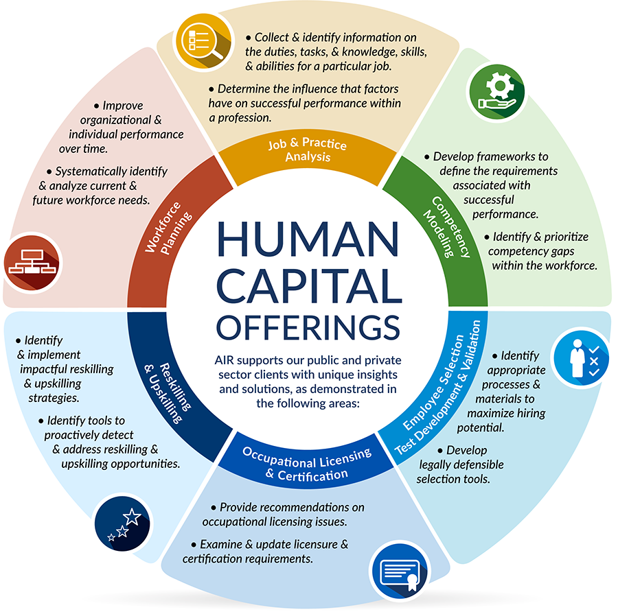 Image of graphic showing AIR's services in Human Capital