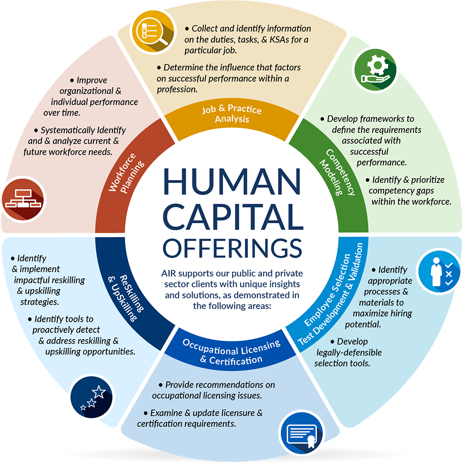 Image of infographic depicting AIR's expertise in human capital solutions