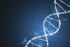 Image of DNA double helix