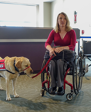 Image of woman in a wheelchair with a guide dog in an airport